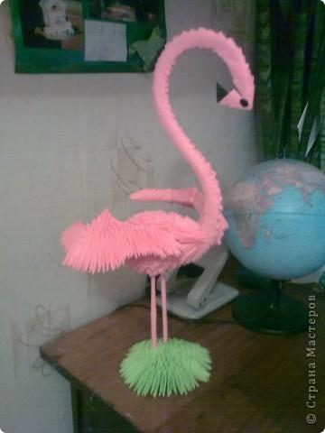 Розовый фламинго для нэнэйки
