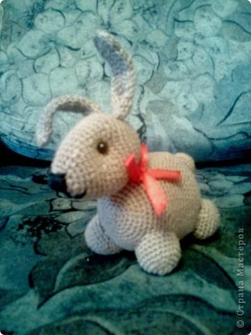 Кролик - символ 2011 года. фото 1