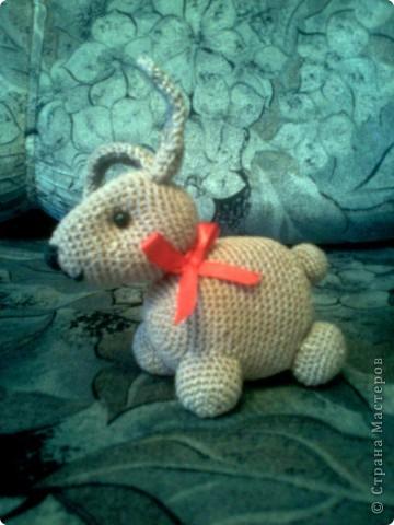 Кролик - символ 2011 года. фото 2