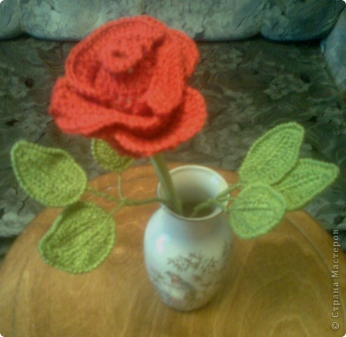 Цветок Роза фото 1