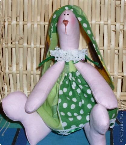 Зеленая зая. фото 2