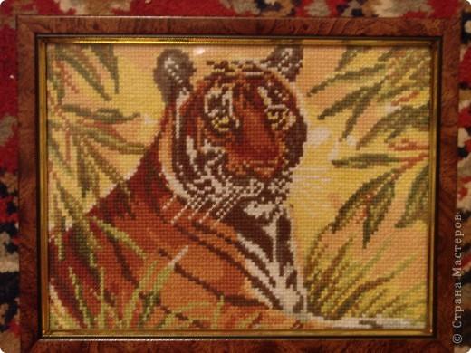 Этого тигра подарила подруге на Новый год