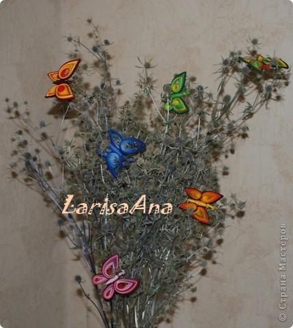 Летом отдыхая на Днепре, насобирала букетик чертополоха, он уже высох, а на днях сделала бабочку - посадила её на веточку и решила сделать ещё цветных бабочек! Вот получилась такая композиция! Теперь веточка стала веселее, а была очень мрачная.... фото 1