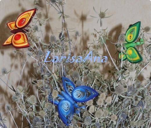 Летом отдыхая на Днепре, насобирала букетик чертополоха, он уже высох, а на днях сделала бабочку - посадила её на веточку и решила сделать ещё цветных бабочек! Вот получилась такая композиция! Теперь веточка стала веселее, а была очень мрачная.... фото 2