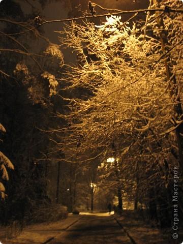 Зима фото 6