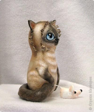 Маленькая, хорошенькая, немного хитренькая, но очень добрая кошечка)) фото 7