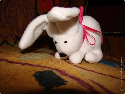 Кроляшка фото 2