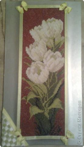 Подарок любимой бабушке - ее любимыфе цветы ТЮЛЬПАНЫ