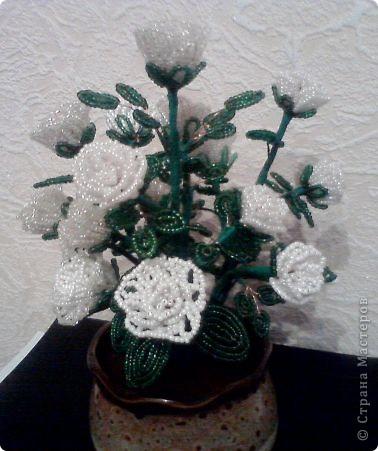 букетик цветов фото 3