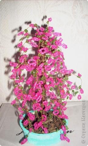 Это моё первое деревце. Я назвала его деревом счастья: розовый цвет - это нежность, тепло, то есть то, что даёт радость. А когда человеку радостно, значит, он счастлив.