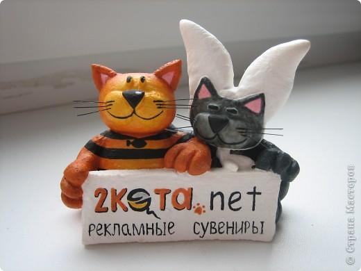 2 кота фото 2