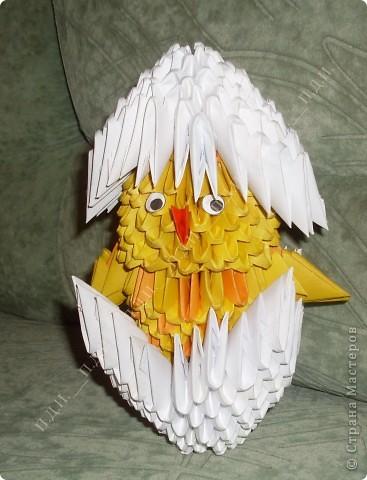 Мой цыплёнок в скорлупе :)