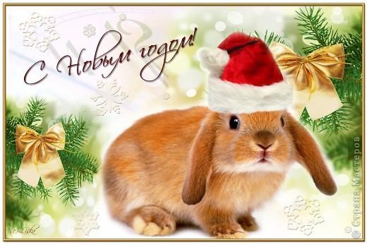 Кролики - это не только ценный мех, но и...символ будущего года...