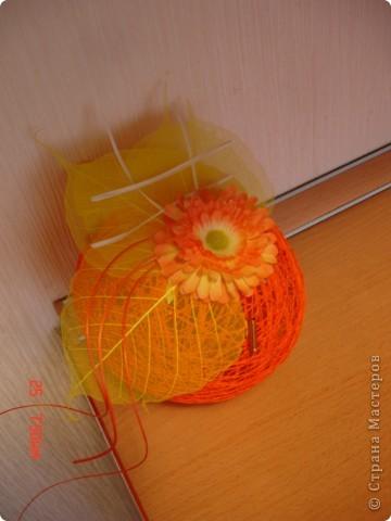 Оранжевое настроение)))) фото 2