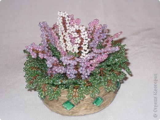 izobrazhenie_053 Сакура в цвету.Как сделать цветочек.Фотоподборка