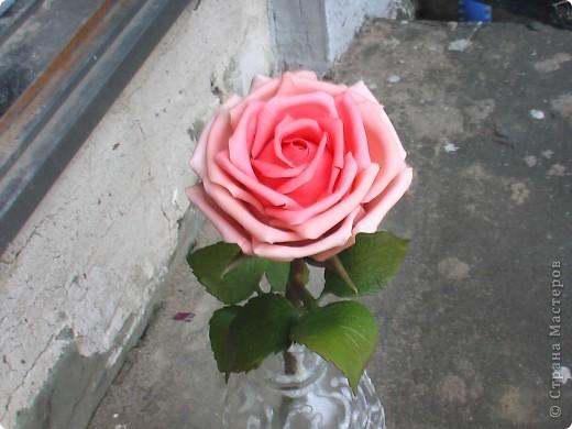 Роза из самоварного ХФ фото 1
