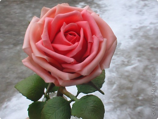 Роза из самоварного ХФ фото 3