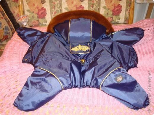 Зимний комбезик для собачки. фото 2