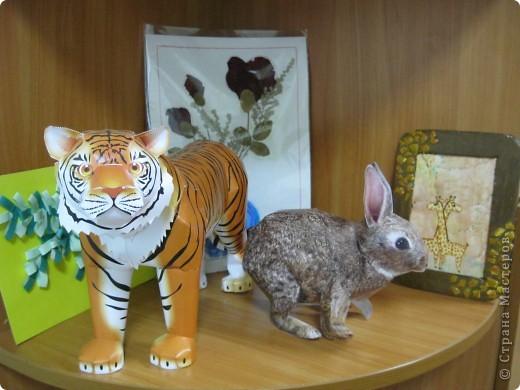 Стары Год Тигра и Новый Год Кролика!