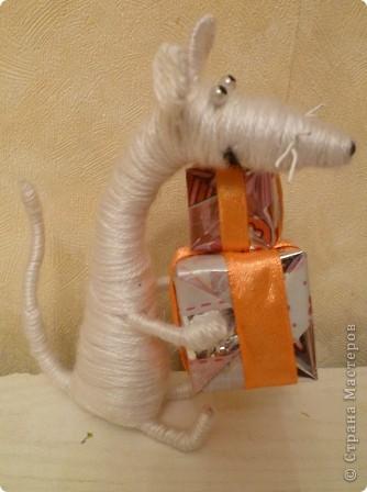 крыски фото 4