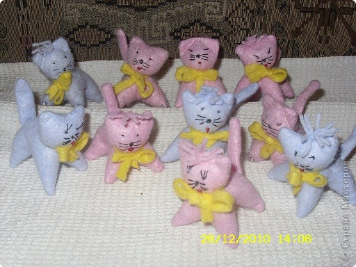 Вот такие котята отправятся к Даниным друзьям фото 1
