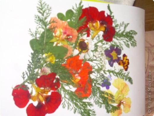 Летом мы с дочкой сделали вот такое панно из живых цветов. фото 2