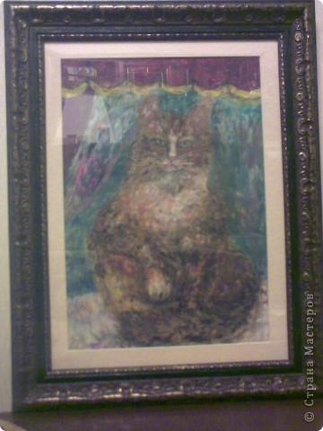 если вы видите глаза кошки...значит, вы знаете её характер. фото 2