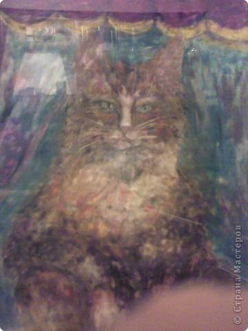 если вы видите глаза кошки...значит, вы знаете её характер. фото 1