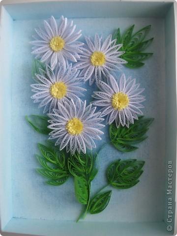 Накопились у меня цветочки и я сделала из них несколько композиций.Решила показать их Вам, пока они без рамок - фотографии без стекла получаются лучше. фото 4