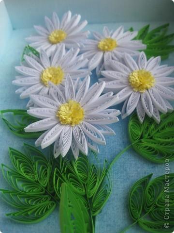 Накопились у меня цветочки и я сделала из них несколько композиций.Решила показать их Вам, пока они без рамок - фотографии без стекла получаются лучше. фото 5