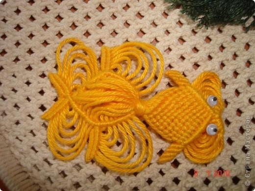 Моя золотая рыбка фото 1