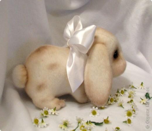 А я решила маме сделать подарок, а так как она любит все нежное, мягкое и пушистое, вот кто родился: Малышка Снежиночка (хоть и не чисто беленькая, но так назвалась!) фото 3