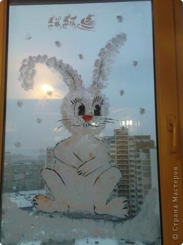 """вот такая """"лапочка"""" живёт у на на окне со вчерашнего вечера))) нарисован зубной пастой (методом """"чпокания"""" губкой)+ глаза, нос, морковка (гуашь). это конечный результат фото 5"""