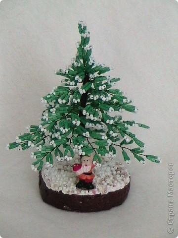 Дед Мороз принес нам елки фото 2