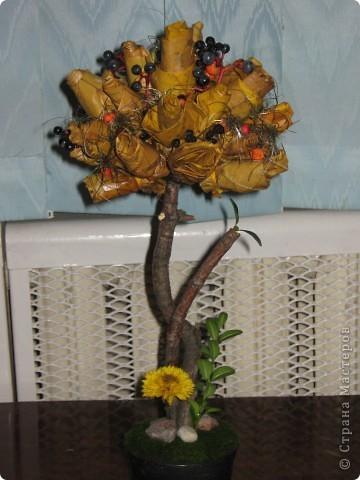 Вот такая креативная ёлка к новому году . фото 2