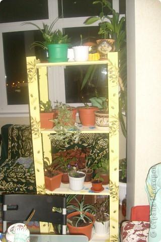 Вот на таких полочках расположились мои цветы. Сам стелаж был куплен в Икеи. Я его покрасила желтой краской и сделала декупаж салфетками. Буду еще покрывать лаком, но это чуть позже, сейчас нет возможности. Я в этом деле новичок, так что жду от вас комментариев, советов, поправок... фото 1