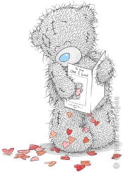 TEDDY BEAR фото 2