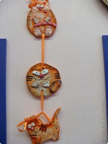 Коты фото 9
