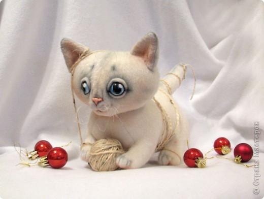 Маленький котенок, нашел себе клубочек, и абсолютно уверен, что это мышка-непоседа)) фото 1