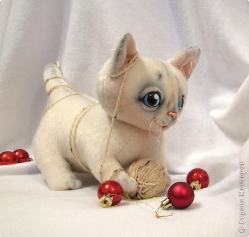 Маленький котенок, нашел себе клубочек, и абсолютно уверен, что это мышка-непоседа)) фото 6