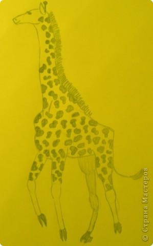 Вот такой жираф у меня получился. фото 1