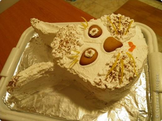 Вот такой десерт мы с мамой соорудили на корпоративное застолье:) фото 3