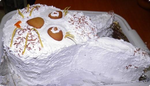 Вот такой десерт мы с мамой соорудили на корпоративное застолье:) фото 4
