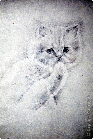 Этот портрет нарисован кажется сангиной, такой черный художественный мелок фото 5