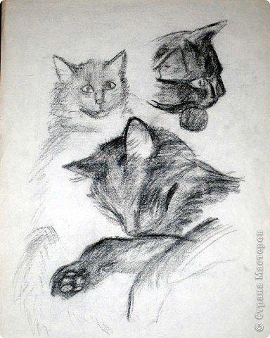 Этот портрет нарисован кажется сангиной, такой черный художественный мелок фото 4