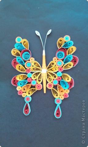 мой бабочки ........ сделала давно ,вылажала сегодня   фото 4