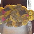 Наша первая сова. Сыну 3 года и он замечательно справился с  аппликацией из листьев. Я додекорировала сову  фото 1