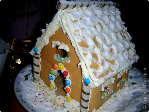 Решили с дочей впервые попробовать испечь пряничный домик, и вот что у нас из этого вышло!! фото 3