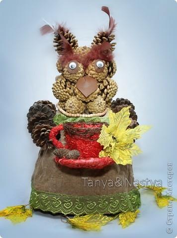 """Вот. Сделали с подружкой в садик поделку из шишек. К празднику осени. В """"состав"""" изделия входят: шишки сосновые, мешковина, перышки от боа, готовая кружечка и листики, бусики и глазки. И, конечно же, горячий клей. :)   фото 1"""
