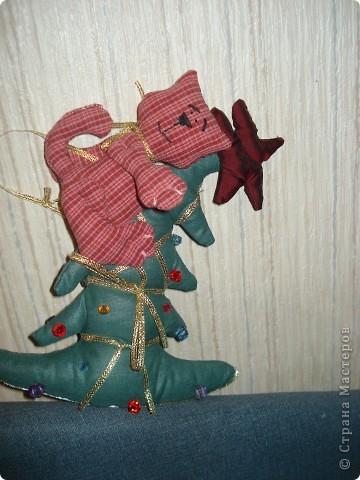 Хочешь быть звездой-залезь на елку. фото 1
